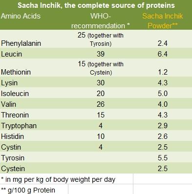 Sacha Inchik and proteins